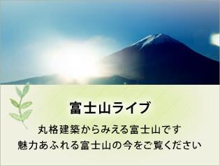 富士山ライブ